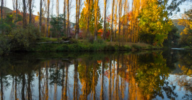 Reflections in the Ovens River at Bright