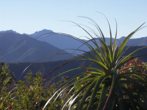High vantage point on the Heaphy Track